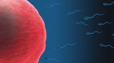 5 veces en que la ciencia aseguró que la vida comienza en la fecundación