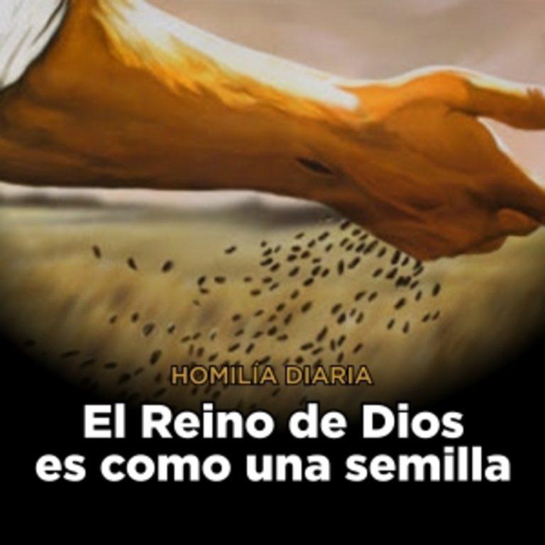 [Homilía Diaria] El Reino de Dios es como una semilla